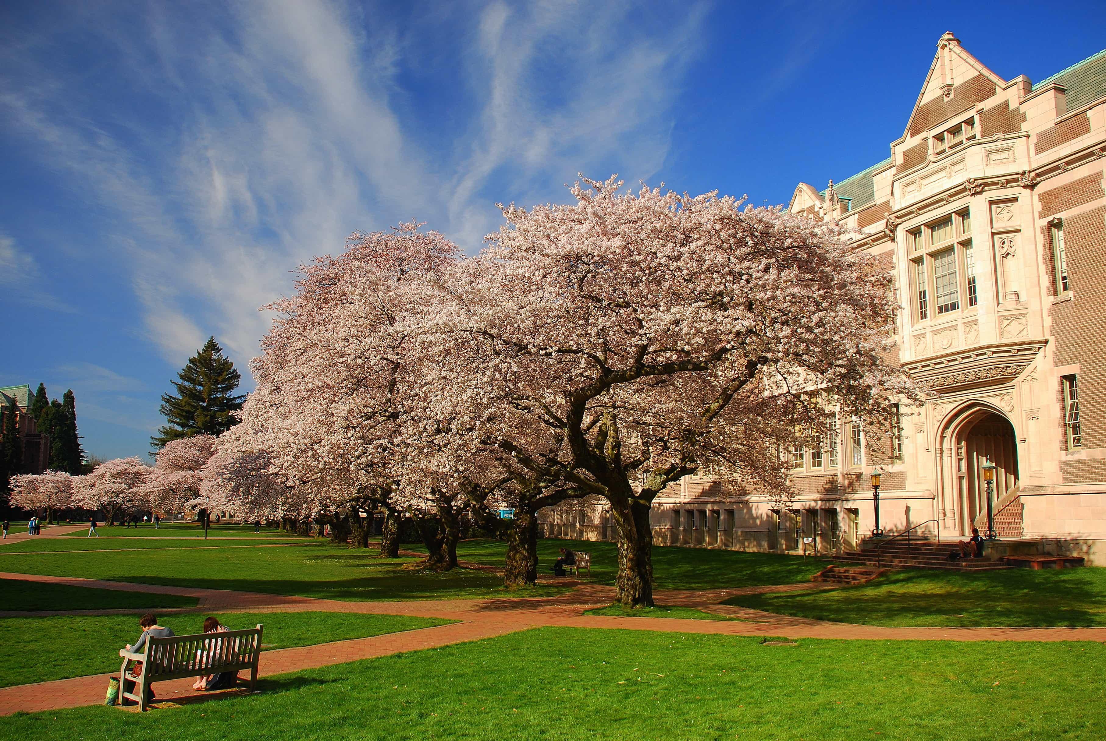 Nurses Aide Training In Washington Cna Certification In Wa